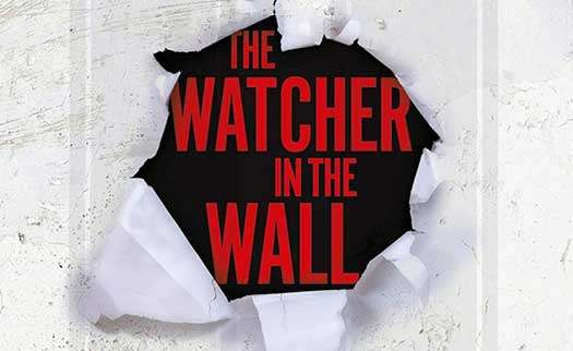 The Watcher In The Wall by Owen Laukkanen - Novels