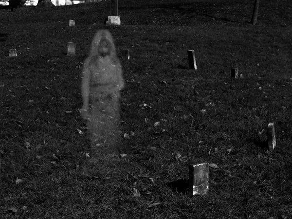 Dead Boy In A Cemetery