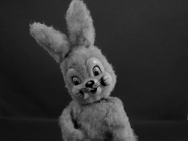 The Sinister Rabbit