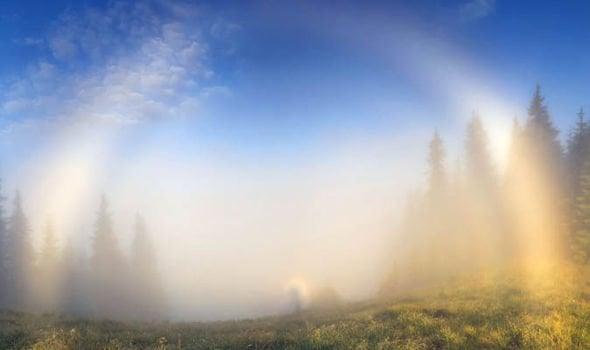 The White Rainbow Creepy Wonders