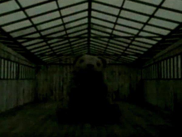 Mr. Bear's Cellar