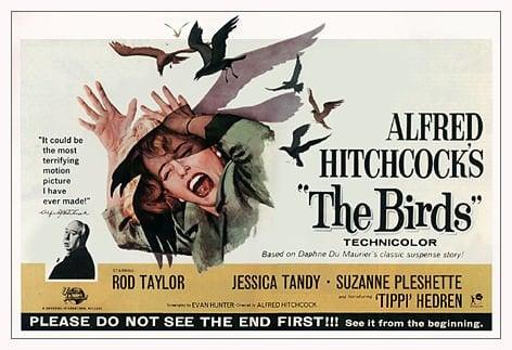 The Birds- 1963