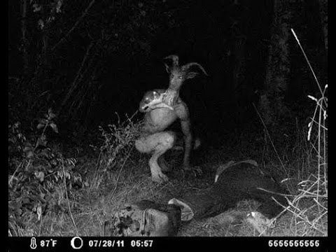 THE GOATMAN (MARYLAND)