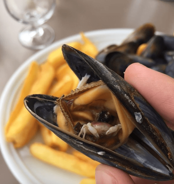 Mussel With Half Eaten Crab
