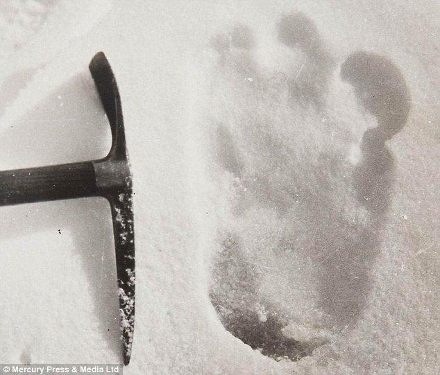 Inhuman Footprints In The Snow