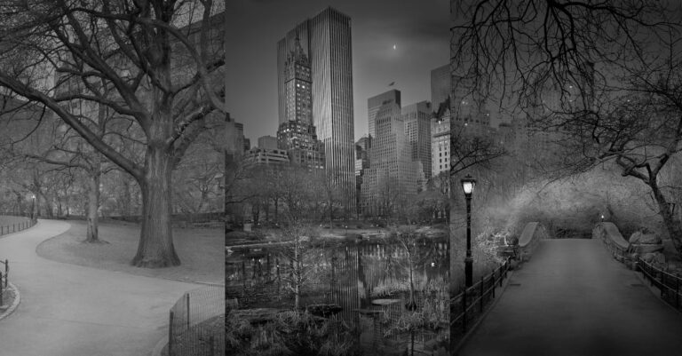 Photographer Takes Hauntingly Beautiful Photos Of Central Park When No One's There