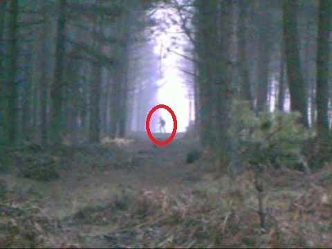 A video captured a werewolf