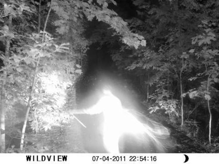 Wildlife Camera Catches Angelic Figure