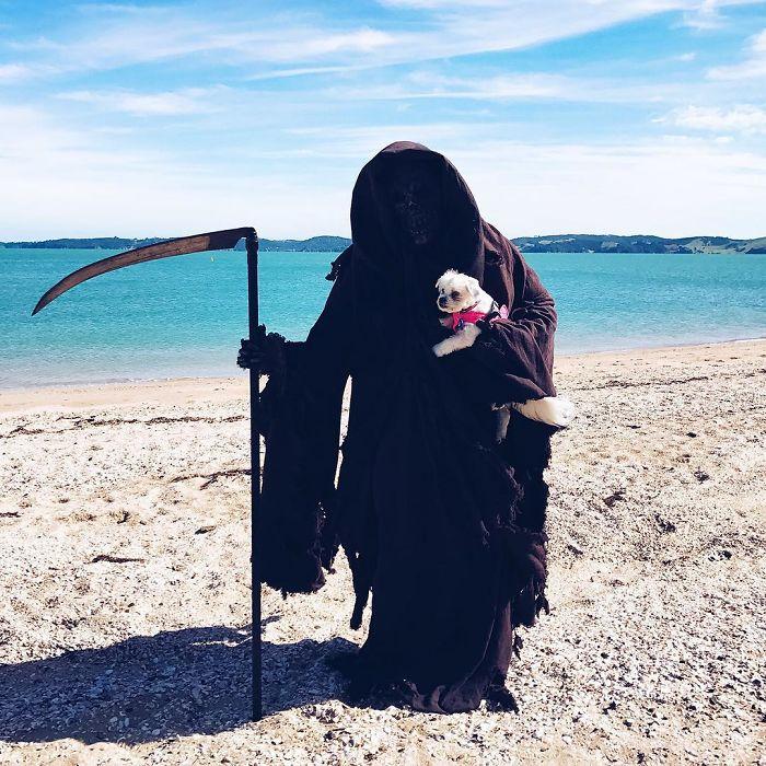 Swim Reaper 17