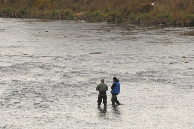 A woman's body was found floating down the river