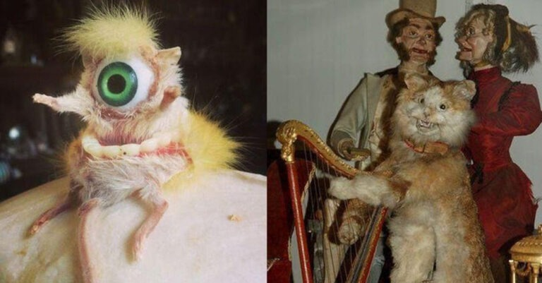 10+ Stuffed Creatures That Are The Stuff Of Nightmares