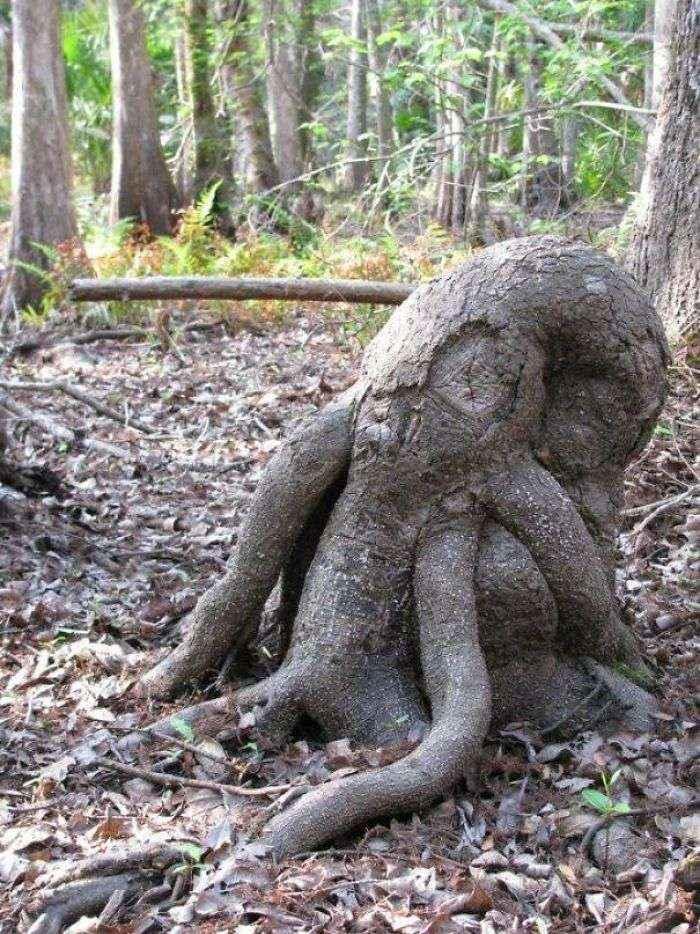 Cthulhu Stump