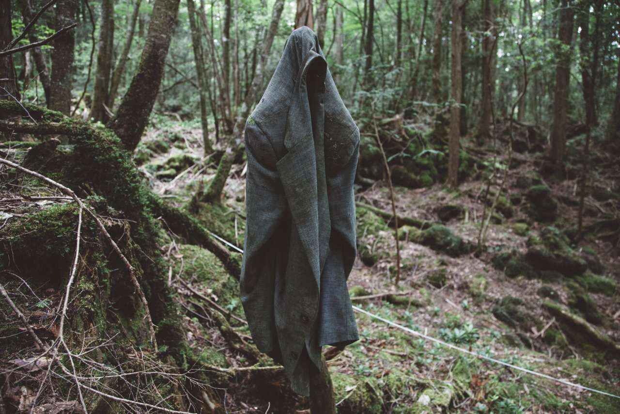 Besides all the creepy things, Aokigahara has also been featured in games, movies, and books
