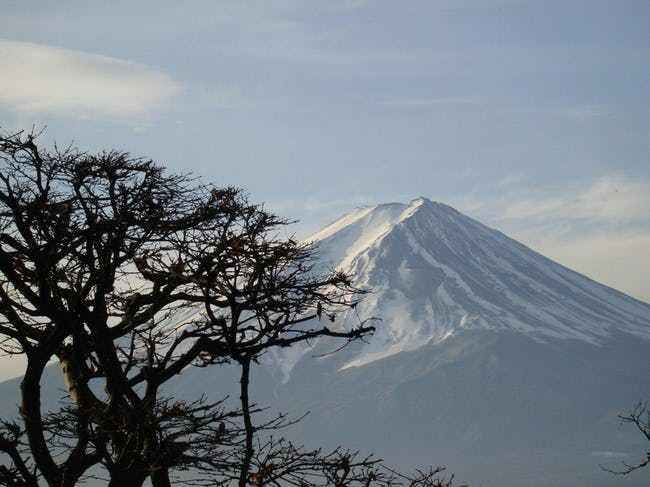 The Forrest lies behind the Mount Fuji