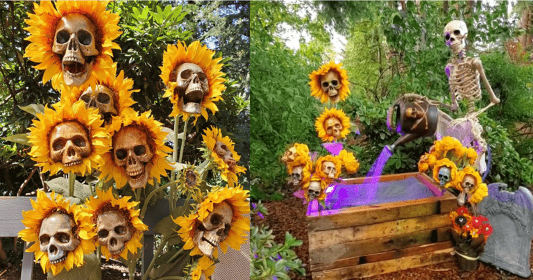 Slicing Skulls and Ominous Sunflowers – We Unraveled the Mystery and Find Terror in the Garden