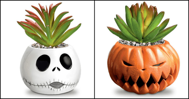 Check Out These Cute 'Nightmare Before Christmas' Succulent Planters