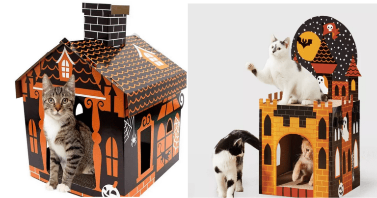 Get An Early Start On Halloween With These Amazing Cat Houses